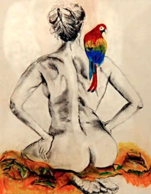 Macaw Figure
