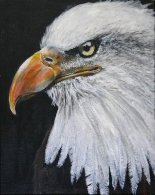 Eagle (Freedom)