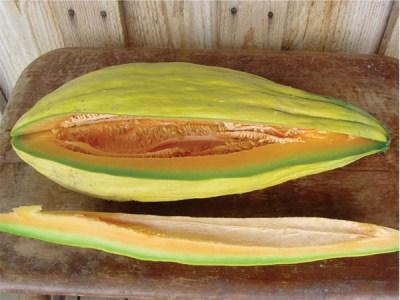 Banana Melon