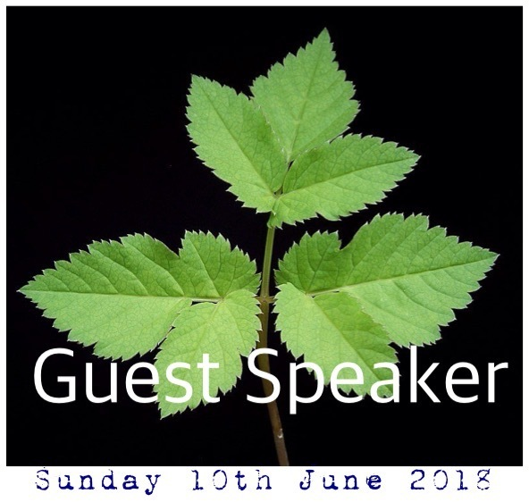 Sunday 10th June 2018 - 10am Service