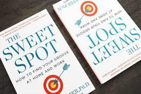 Finding the Sweet Spot: Where Ambition, Meaning and Joy Intersect