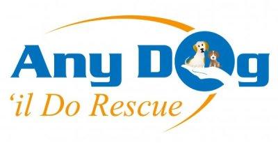 Any Dog 'il do rescue