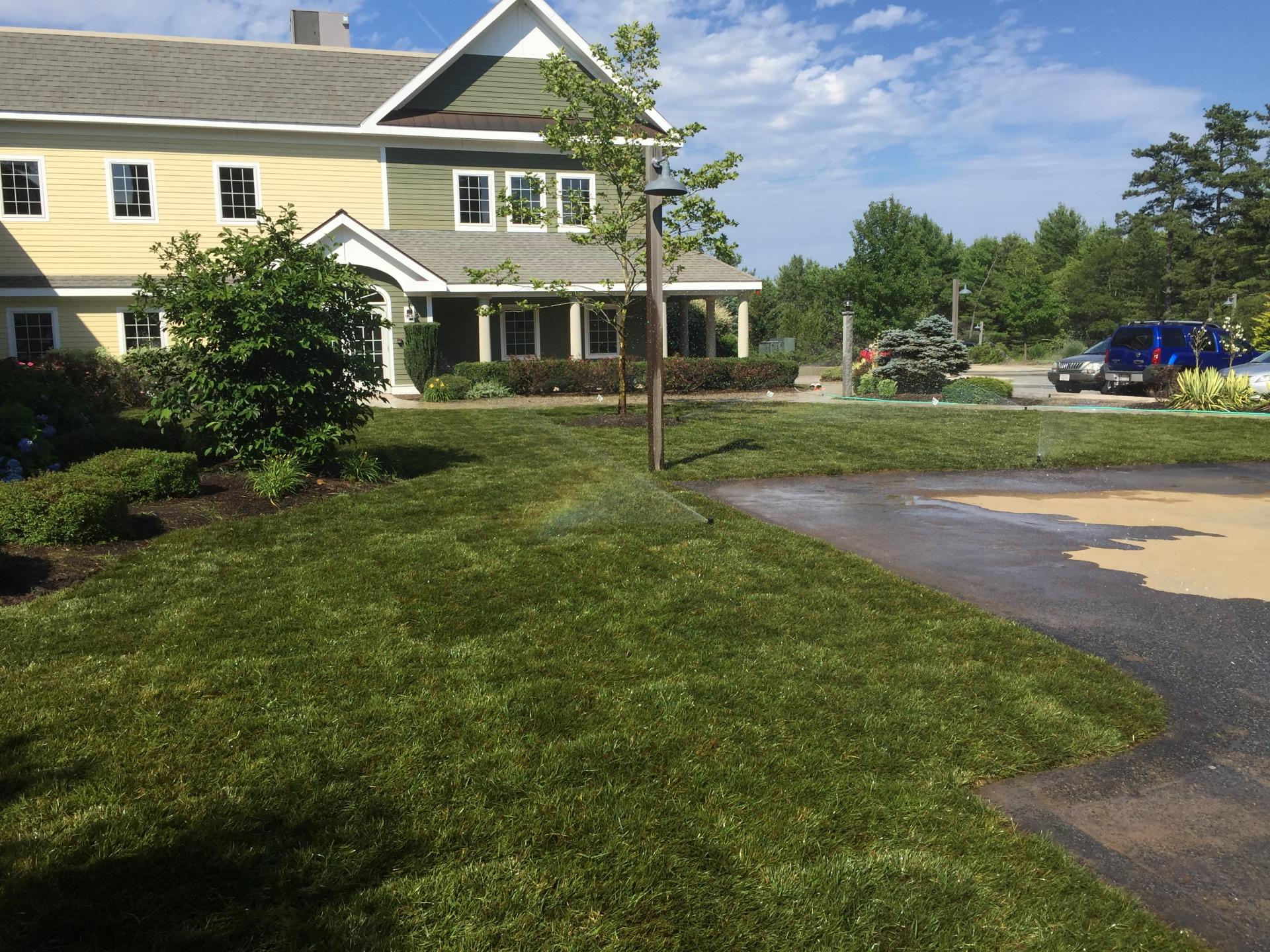 Lawn Installation