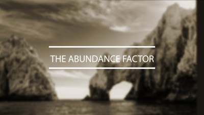 THE ABUNDANCE FACTOR MOVIE