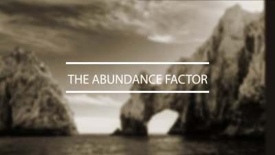 THE ABUNDANCE FACTOR MOVIE