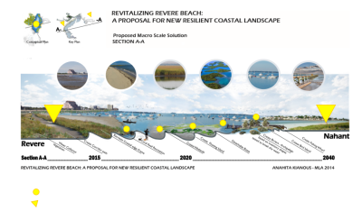 A New Coastal Landscape Principle