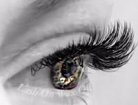 beautiful eyes, eyelash extensions, mink eyelash extensions, mink lashes