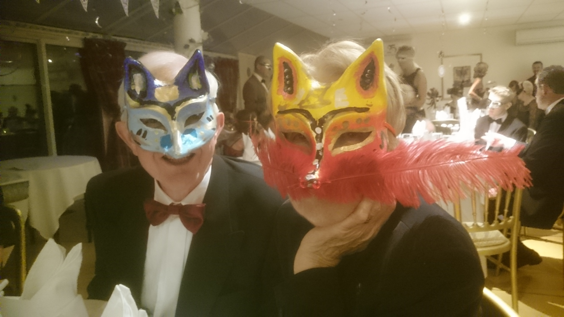 Masked Ball for Montacute School Sept 2015