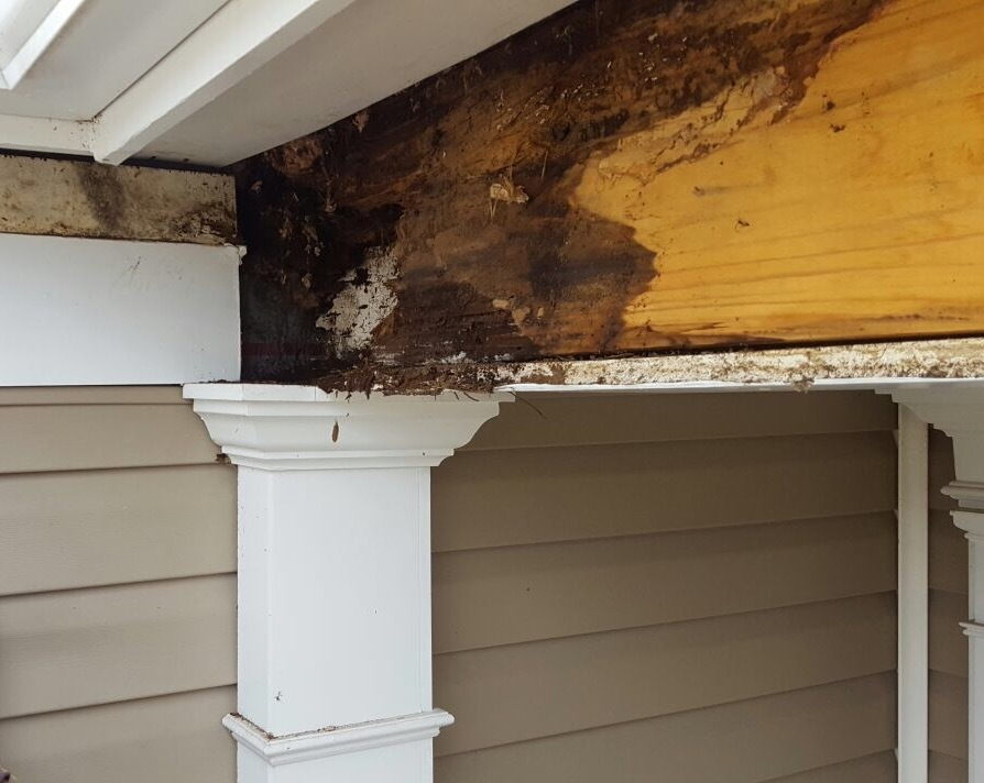 Full Service Gutter Company With 20 Years Experience