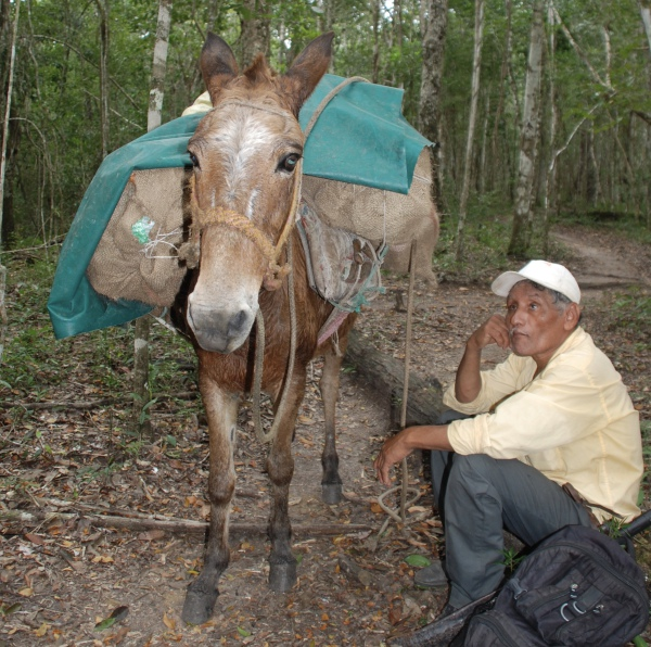 Jose and his trusty mule Guatemala