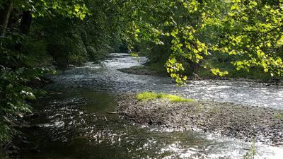 Lazy River