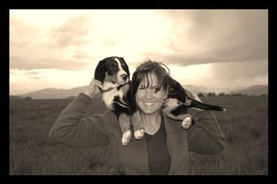Carolynn CedarCove puppies