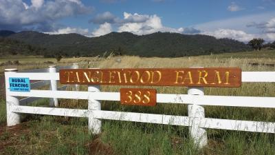 Tanglewood 2017 Racing