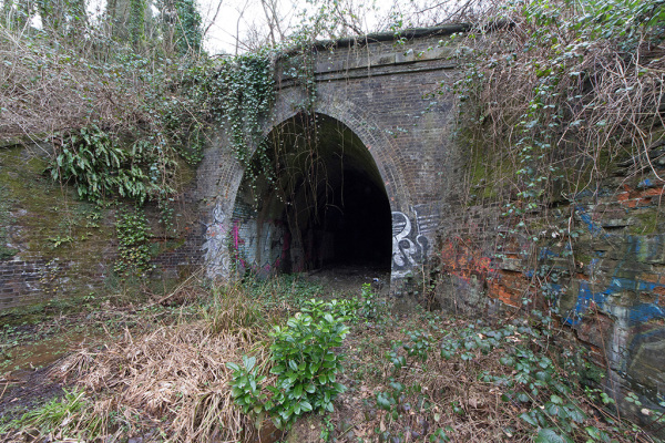 Grove Tunnel 1