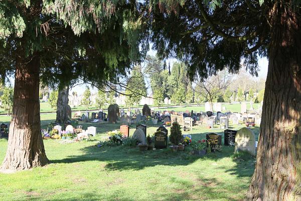 Cemetery 10