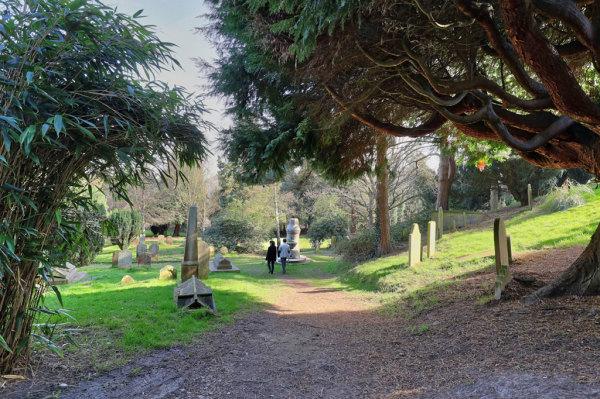 Woodbury Park Cemetery 7