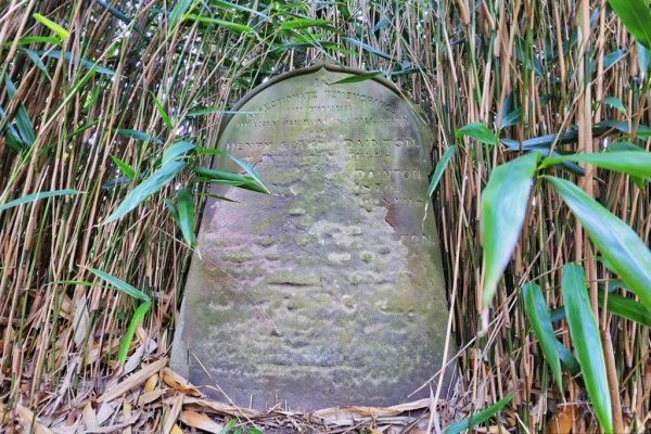 Woodbury Park Cemetery 8