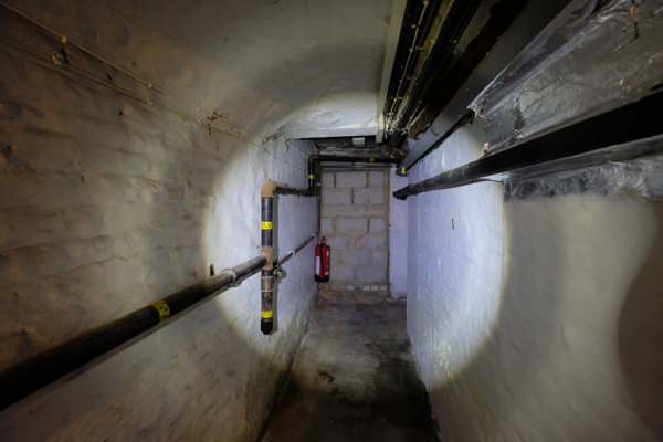 Cellar  6