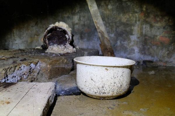 Cellar  9