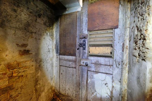 Cellar  12