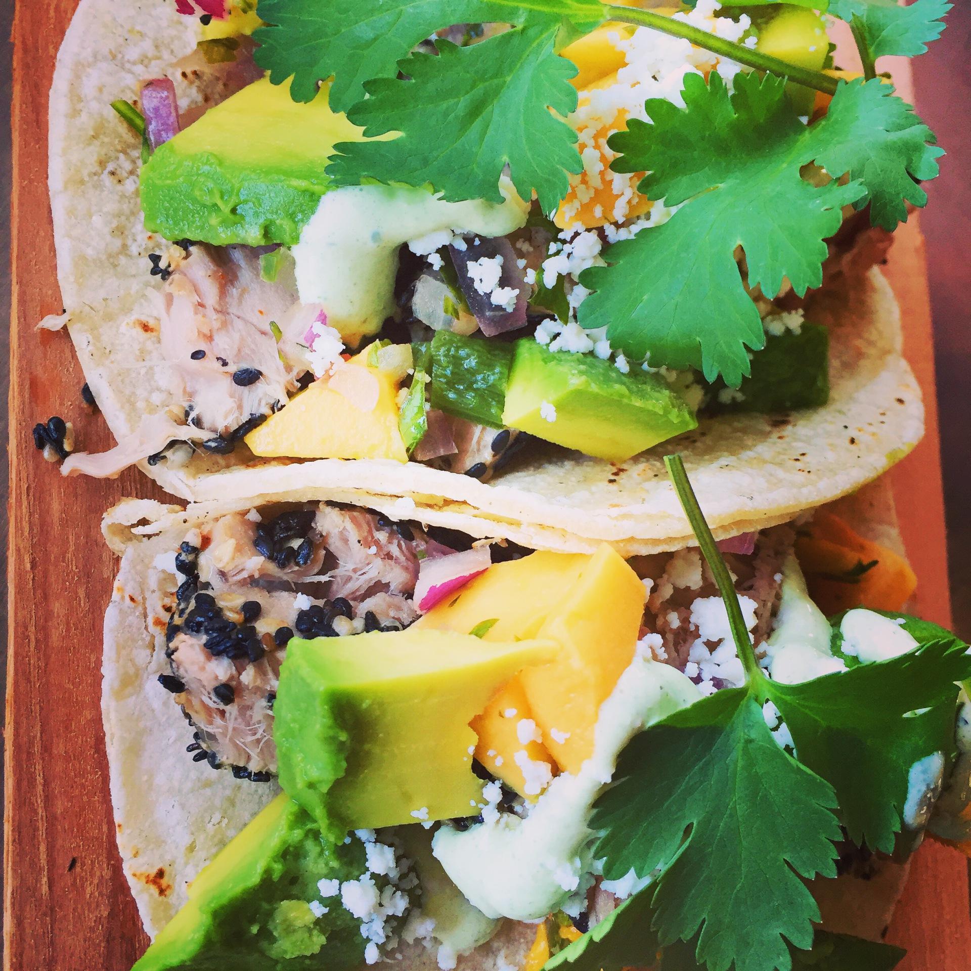 Gourmet Street Tacos