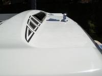 Ski Boat Detailing/Polish