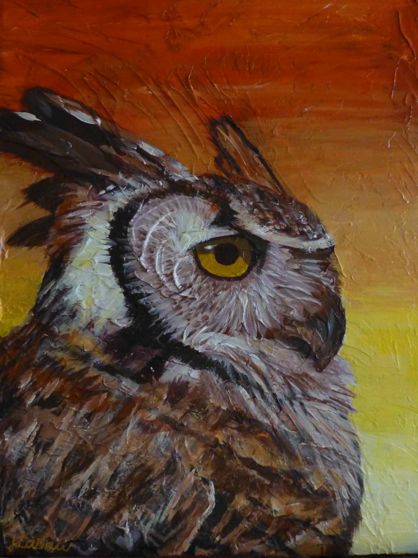 Owl at Twilight