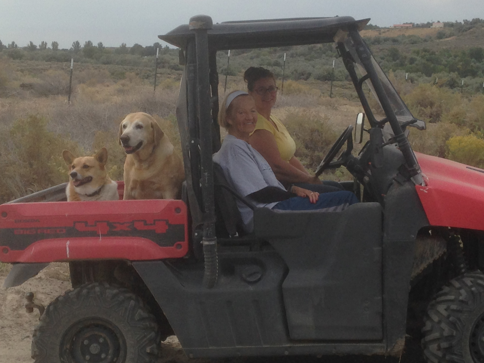 Denise giving the dogs and Toms mom Betty a ride to corral in Big Red