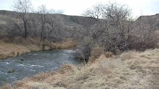 Creek runs out of Eagle Canyon for three miles through ranch
