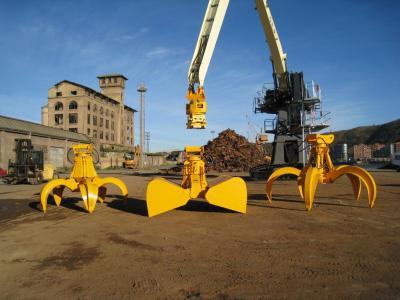 Multi-purpose Bulk and Container Loading Cranes