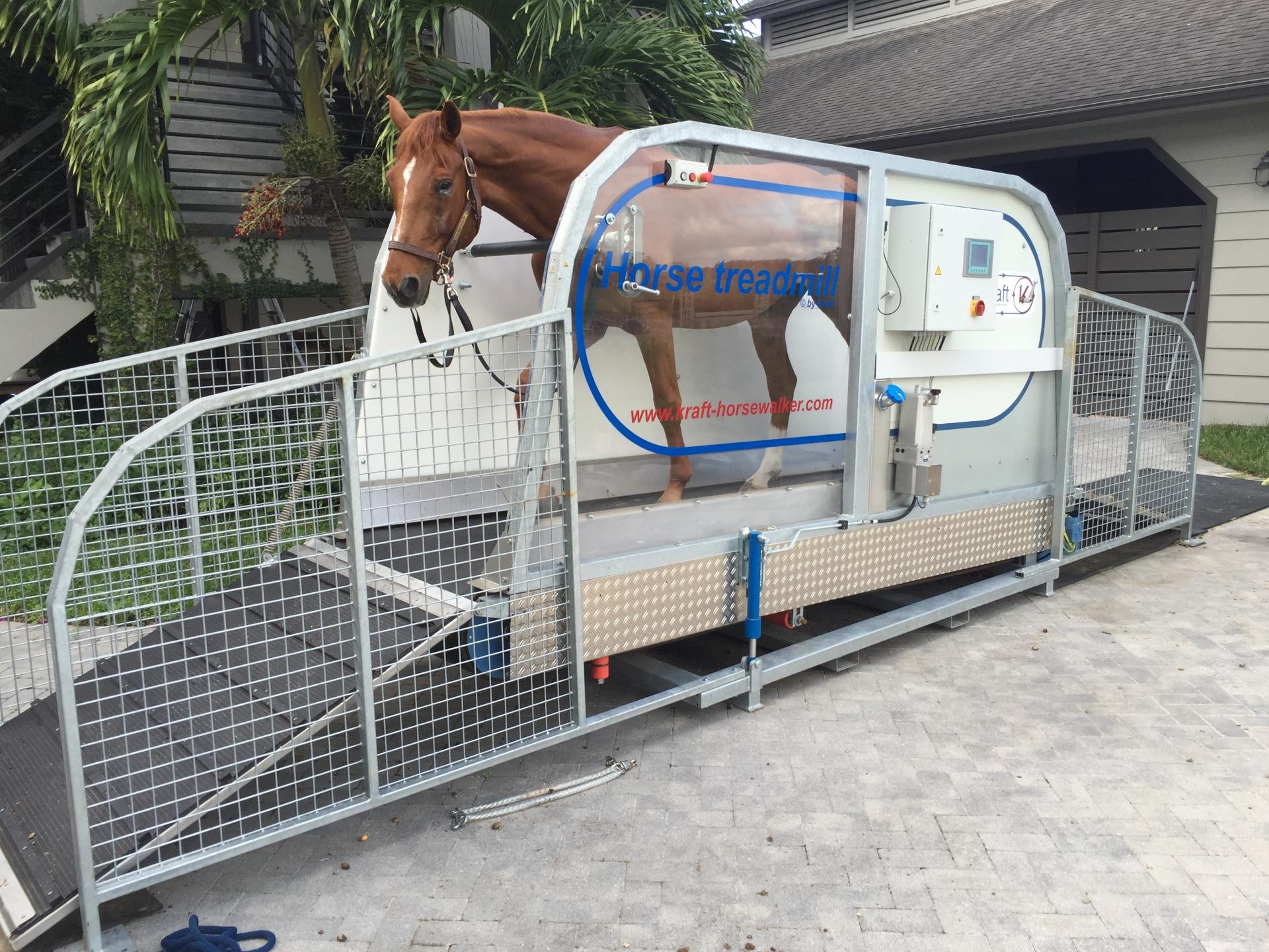 horse treadmill incline 4 Winds Farm