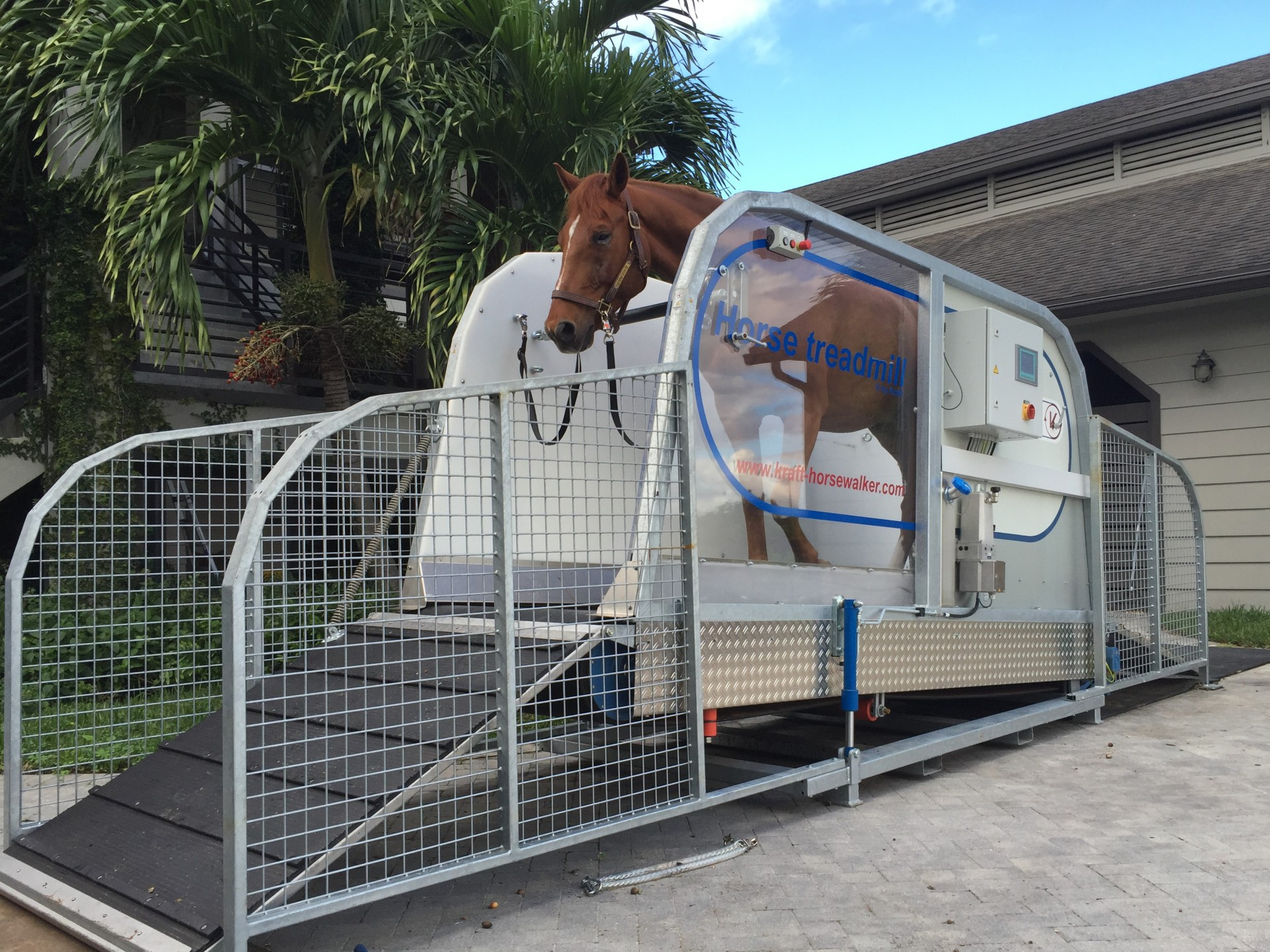 horse treadmill with incline