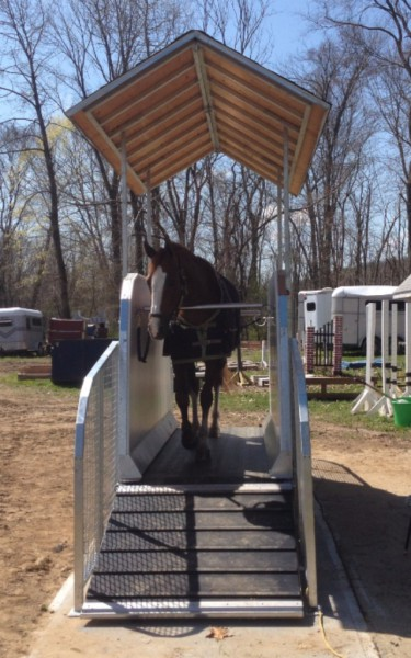 Horse Treadmill with roof front view