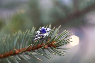Therice & Max's Wedding Day | Fraser, Colorado Wedding Photographer