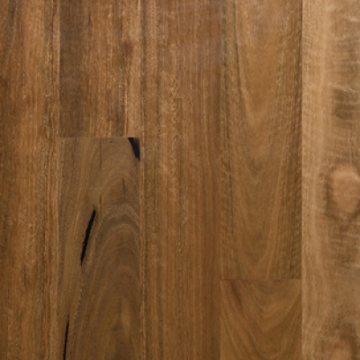 Preference Select - Spotted Gum