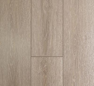 Oakleaf - Seashell Oak