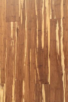 BT Bamboo - Africa