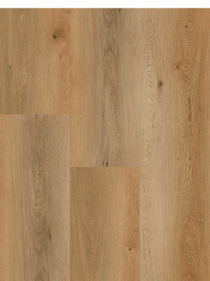 Ornato Hybrid - Oak Saffron