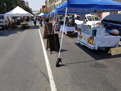 Holyoke Farmers Market 2017