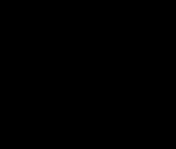 PJDADJ Circle Logo (Black)