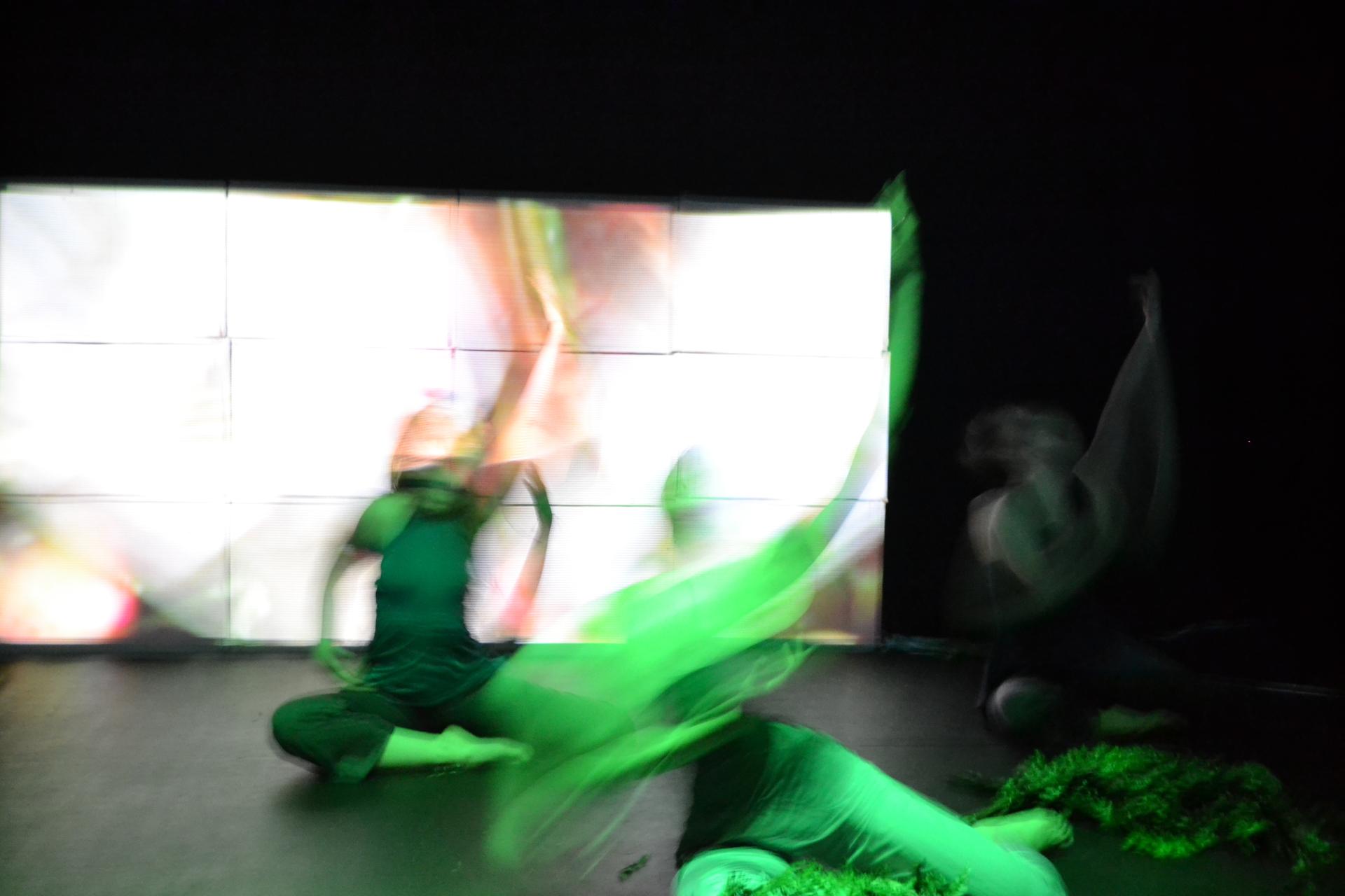 Verde/Gris