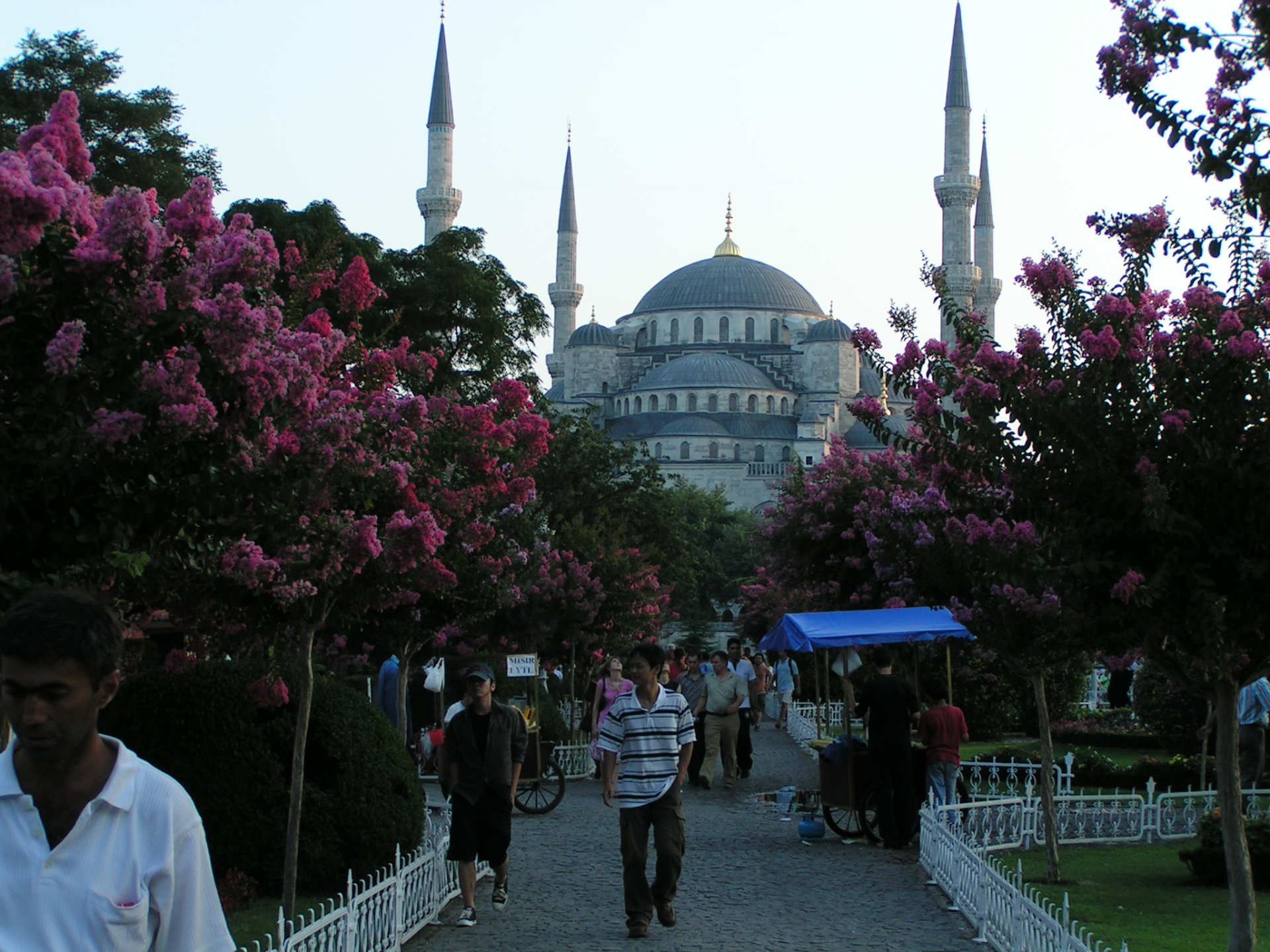 Who knew the Blue Mosque wasn't really blue? Istanbul, Turkey: annmariemershon.com