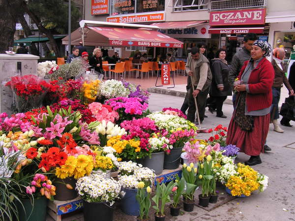 Gypsy women sell flowers all over the city. Istanbul, Turkey: chapter 31, You must only to love them. http://mershon.wordpress.com