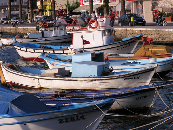 Ayvalık's harbor teems with little fishing boats—oh, so charming. Ayvalık, Turkey: chapter 35, You must only to love them. http://mershon.wordpress.com