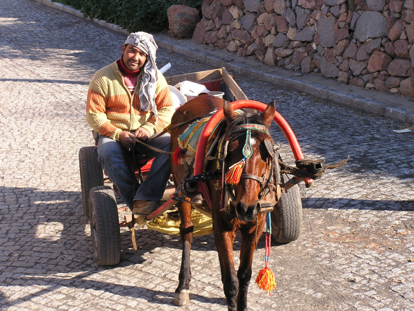 Age-old transport was typical in Yahşibey. Yahşibey, Turkey: chapter 48, You must only to love them. http://mershon.wordpress.com
