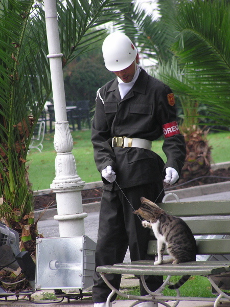I was often touched by the warmth of the Turks, and this guard at the Dolmabahçe Palace is a perfect example. Istanbul, Turkey: chapter 58, You must only to love them. http://mershon.wordpress.com