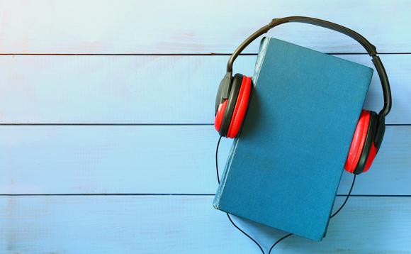 AUDIOBOOK: Homologação e Adjudicação