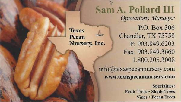 Texas Pecan Nursery