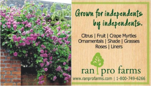 Ran Pro Farms