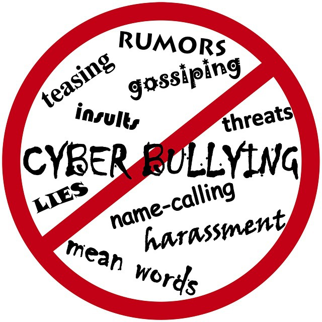 Cyberbullying: What The NC Supreme Court Had To Say About It